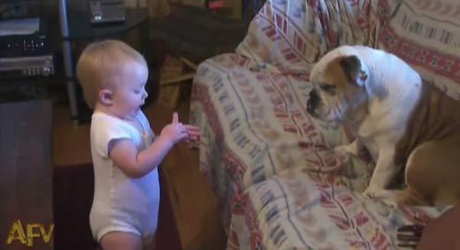 Dialógo entre un bebe y un perro