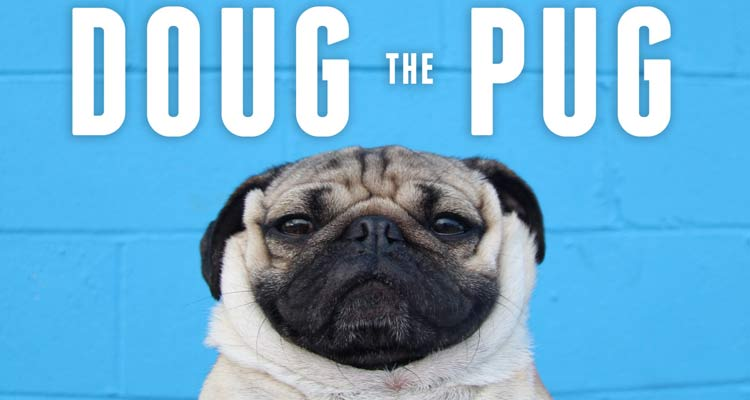 Doug The Pug, el carlino aspirante a todos los Globos de Oro