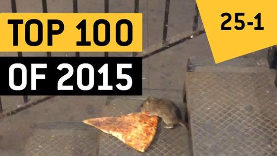 Lo más viral de 2015