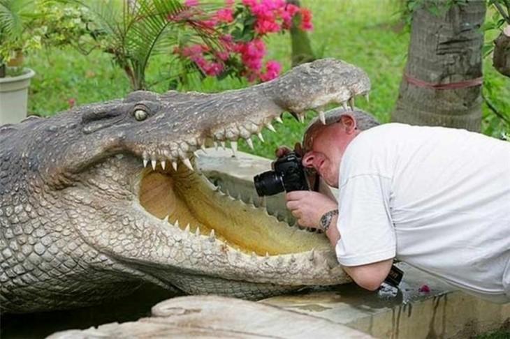 fotografos-foto-perfecta (2)