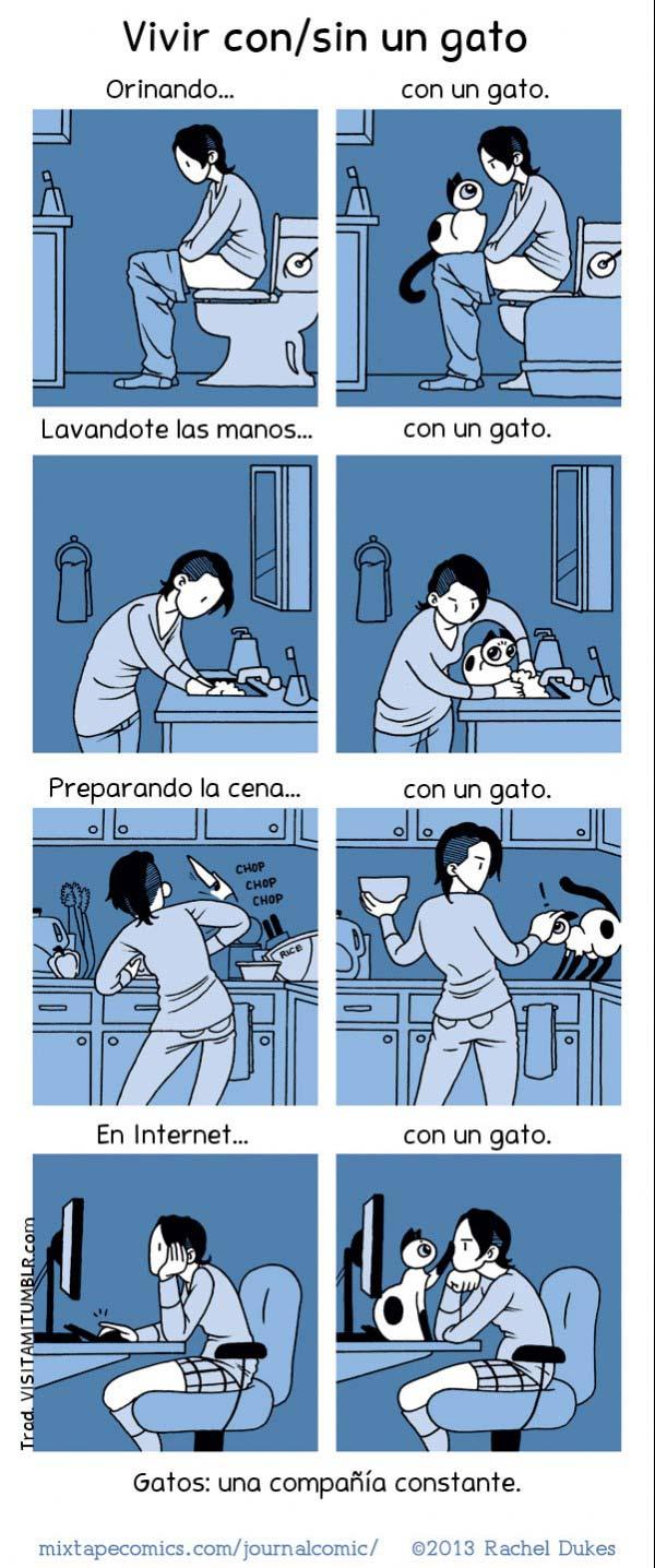 Vivir con y sin gato