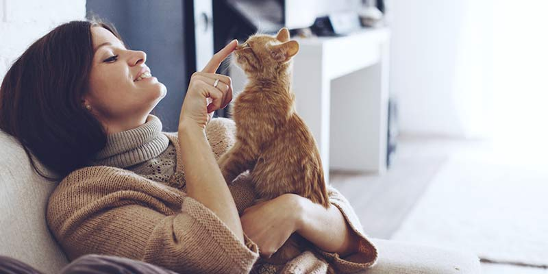 Diferencias entre vivir con (y sin) un gato