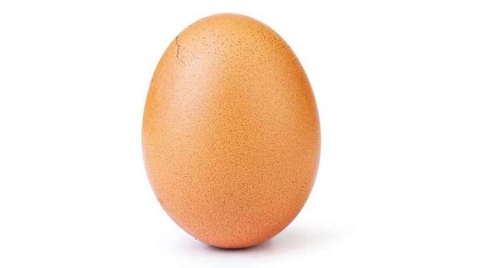 El huevo más famoso de Instagram
